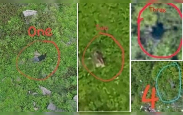 Army releases video of unclaimed Pak BAT commando corpses