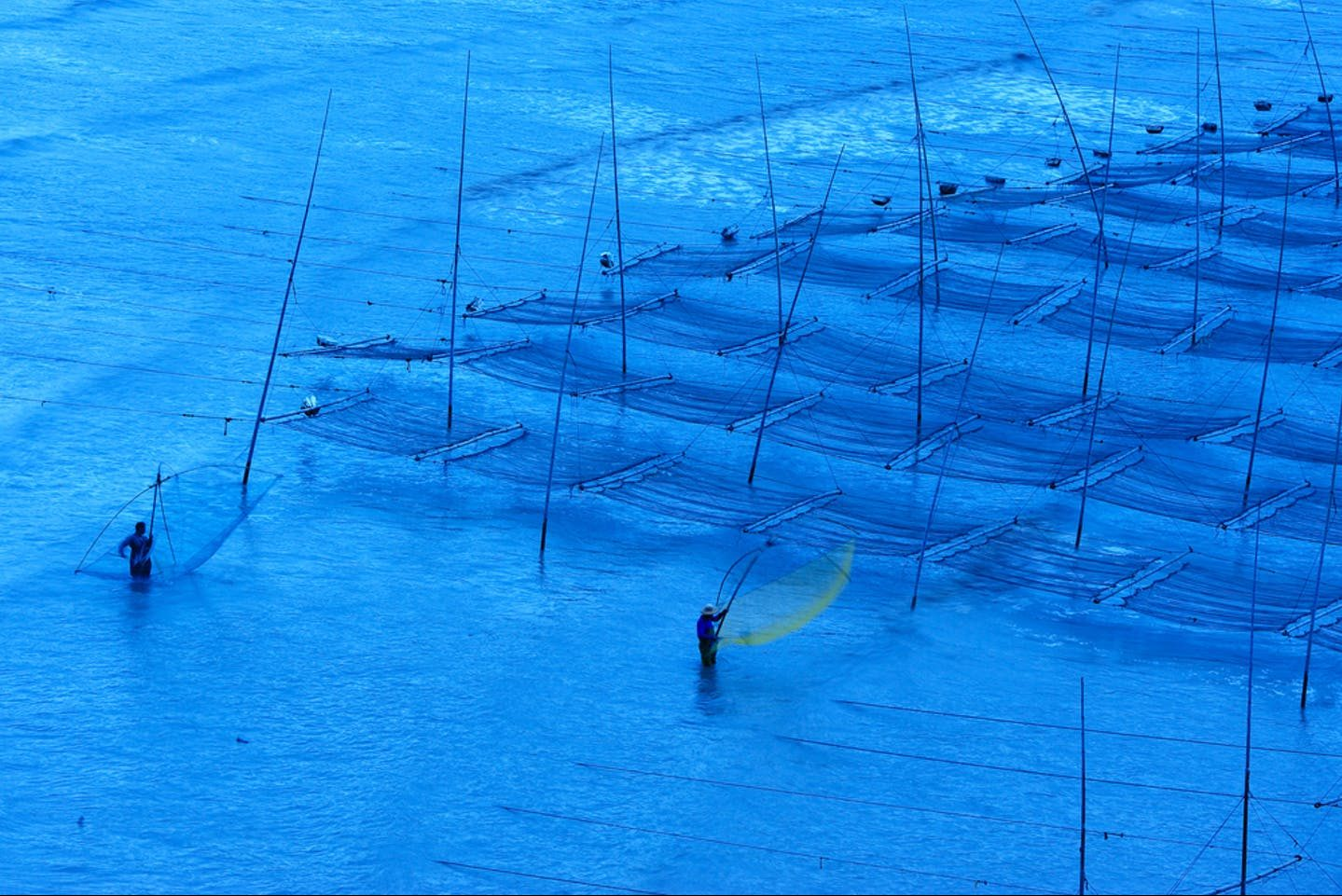 Attracting Investment in Aquaculture Sector