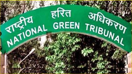 NGT forms panel to look into plea alleging illegal mining in Odisha