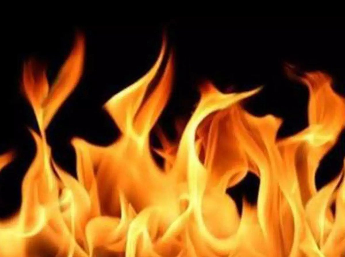 Man tied to tree, burnt to death in Angul