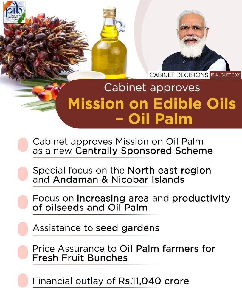Cabinet nod for Rs 11,040 cr mission to boost oil palm farming in next 5 years